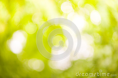 Natural blurred background full