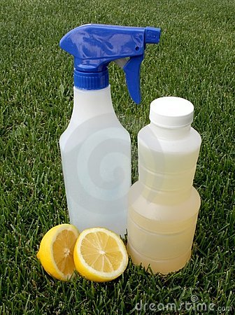 Free Natural Cleaning Supplies Royalty Free Stock Photography - 14725707
