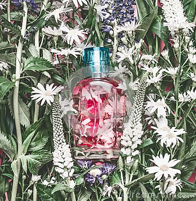 Free Natural Cosmetics Glass Bottle With Pink Liquid: Tonic , Makeup Fixing Mist Or Perfume On Herbal Leaves And Wild Flowers Stock Photo - 111326140