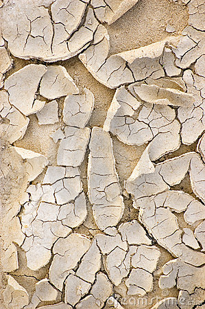Natural Dried Ground Texture Background Closeup