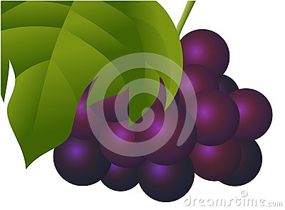 Natural Fresh Grape Fruit