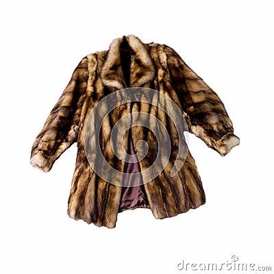 Free Natural Fur Coat Stock Photography - 17612212