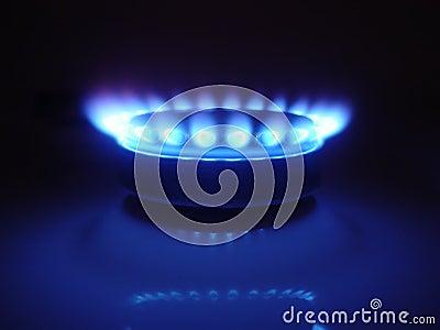 Natural Gas 08