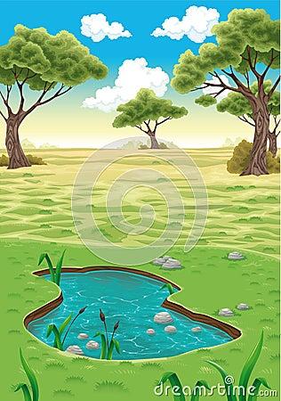 Natural landscape.