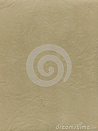 Free Natural Light Leather Texture Stock Photos - 6813943