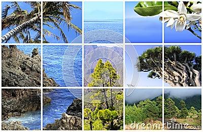 Natural Parc of La Palma