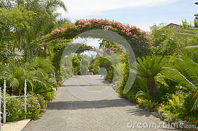 Natural passage of flowers