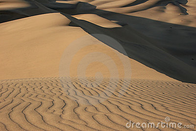 Natural pattern in dunes.