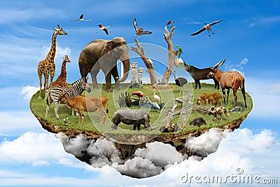 Natural Reserve concept