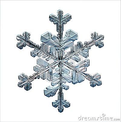 Free Natural Snowflake Macro Naturals Royalty Free Stock Image - 45555916