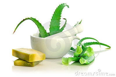 Natural soap and aloe vera
