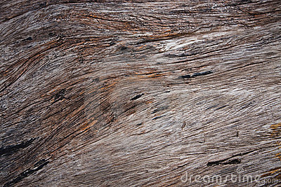 Natural surface of old teak wood
