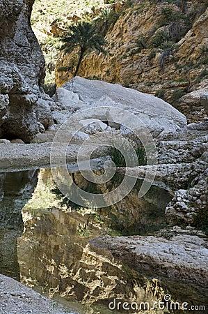 A natural wadi in Oman