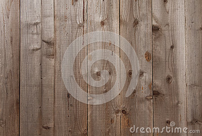 Natural wood plank with texture
