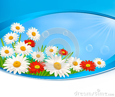 Nature Background With Colorful Beautiful Flowers Stock Images ...