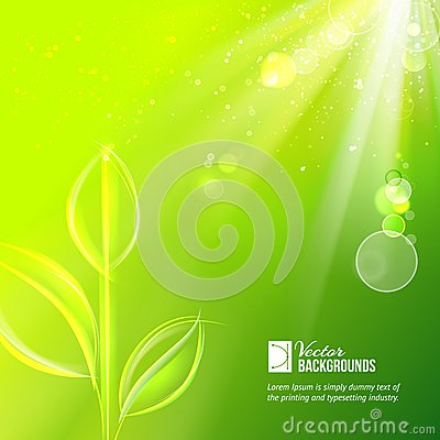 Nature background for summer design.