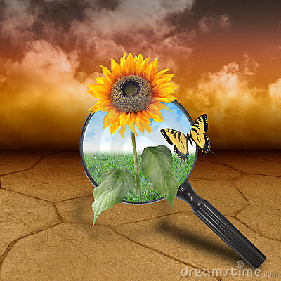 Nature Desert with Growing Flower of Hope