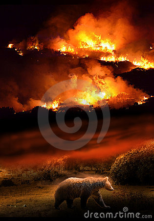 Nature destruction