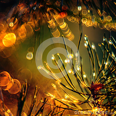 Free Nature Detail Beauty Royalty Free Stock Image - 93954286