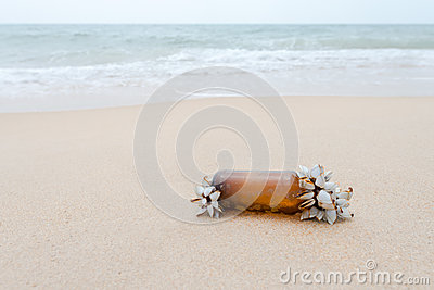 Nature fight against coast and sea pollution.
