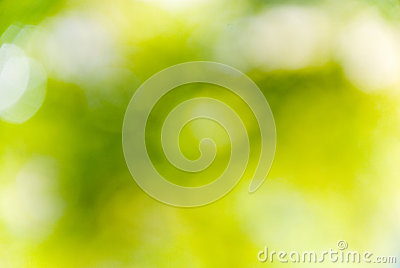 Nature green background