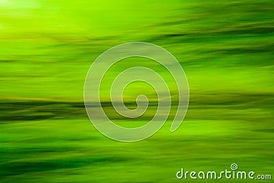 Nature green blur