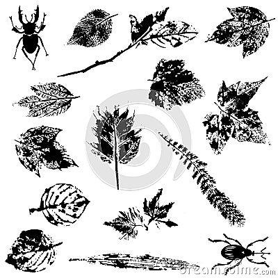 Nature Grunge Elements