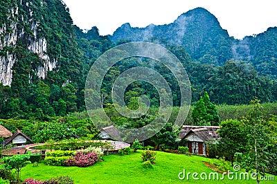Nature at KhaoSok , Thailand