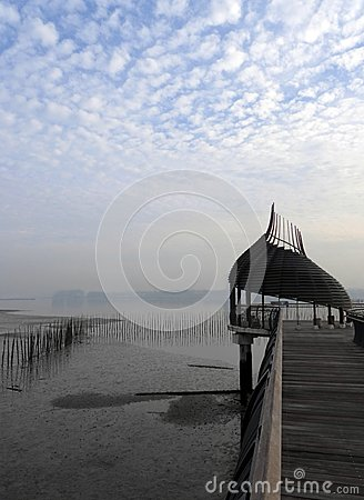 Free Nature, Mangrove Birdwatching Walkway Royalty Free Stock Photos - 55706688
