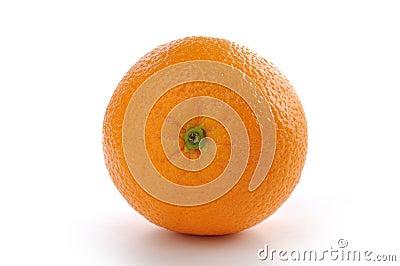 nature orange
