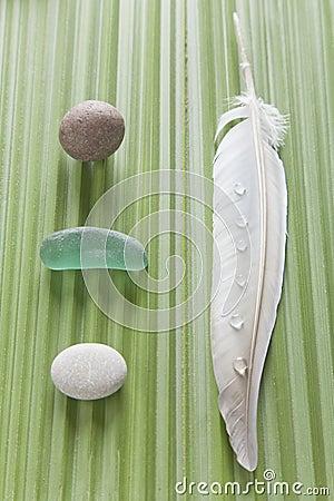 Nature on a palm leaf