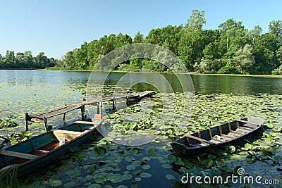 Nature park Lonjsko Polje - Croatia