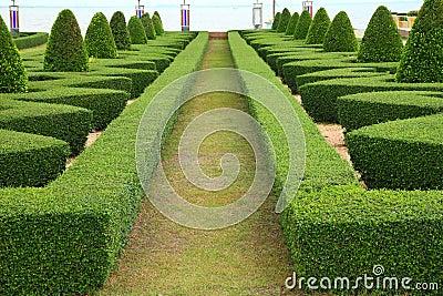 Nature path through