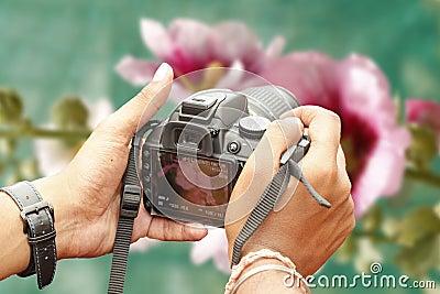Nature photographer taking photo using slr camera