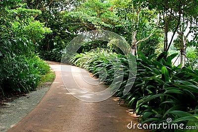 Nature s Walk