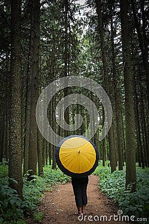 Nature scene with yellow umbrella