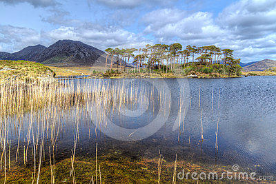 Nature scenery of Connemara