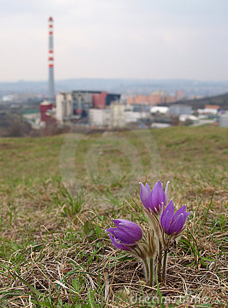 Nature vs. industry