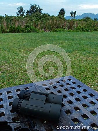 Naturhobby der Vogelbeobachtung im Freien