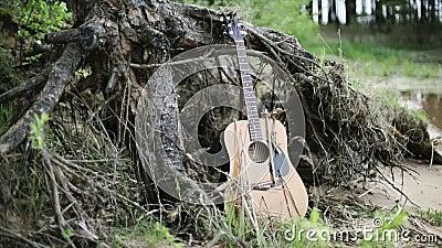 nave De Vergeten gitaar dichtbij het meer stock footage