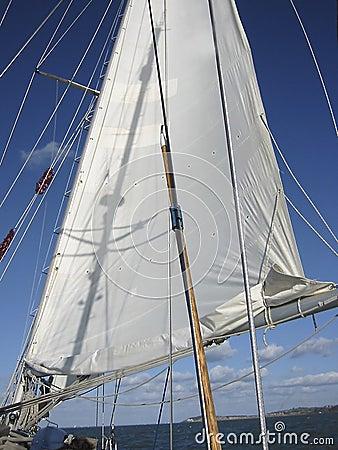 Navegación de 1
