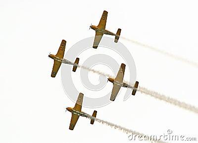 Navy Aerobatic Team 2