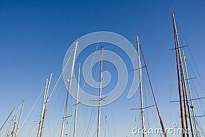 Navy Poles