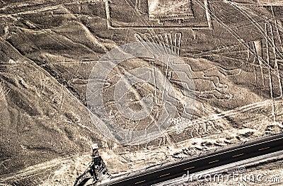 Nazca Lines - Tree fugure