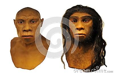 Neanderthal man face