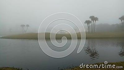Nebel über dem Morgenteich, Florida stock footage