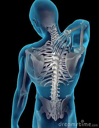 Free Neck/Back Pain Royalty Free Stock Images - 14244419