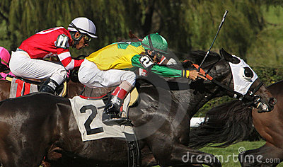 Neck and Neck Horse Race Editorial Photography