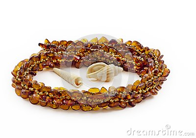Necklace of Baltic amber and shellfish