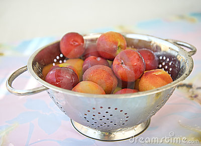 Nectarines in a rinse strainer